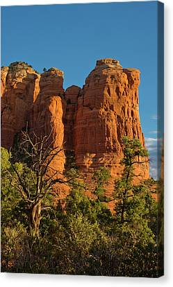 Early Morning, Teapot Trail, Coffee Canvas Print