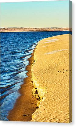 Early Morning Walk Canvas Print