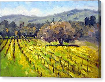 Early Mustard In The Vineyards Canvas Print by Char Wood