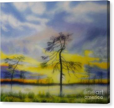 Early Summer Morning Canvas Print by Veikko Suikkanen