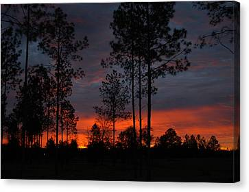 Early Sunrise Canvas Print by Donald Williams