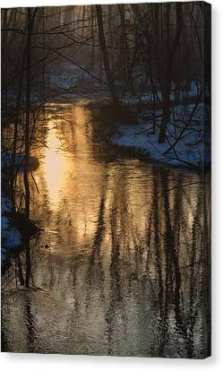 Early Winter Morning Canvas Print by Karol Livote