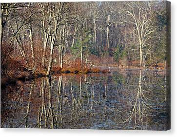 Early Winter Reflects Canvas Print by Karol Livote