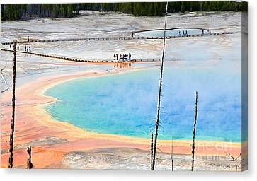 Earth Rainbow - Overhead View Of Grand Prismatic Spring In Yellowstone National Park.  Canvas Print by Jamie Pham