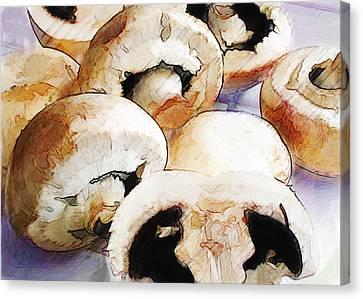 Earthy Mushrooms Canvas Print by Elaine Plesser