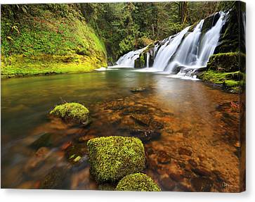 East Fork Coquille Falls Canvas Print by Robert Bynum