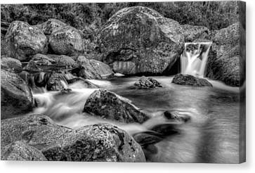 East Kiewa River Canvas Print by Mark Lucey