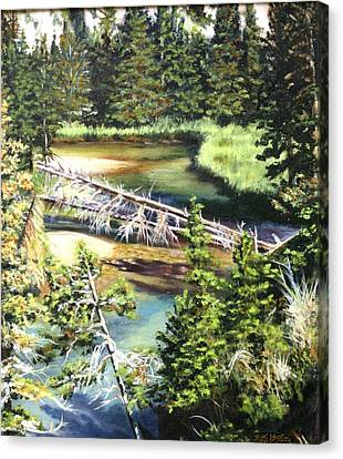 East Rosebud Inlet Stream Canvas Print by Patti Gordon