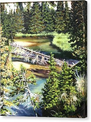East Rosebud Inlet Stream Canvas Print