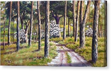 East Texas Dogwood Canvas Print