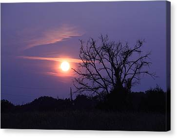 East Texas Sunset May 2014 Canvas Print by Lorri Crossno