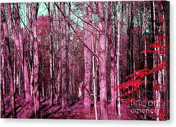 East Trail  Canvas Print by Tina M Wenger