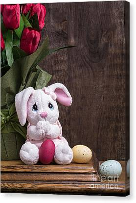 Easter Bunny Canvas Print by Edward Fielding
