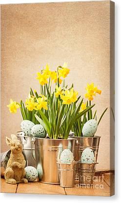 Easter Setting Canvas Print by Amanda Elwell