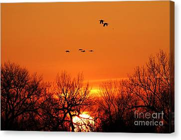 Easter Sunrise Canvas Print by Elizabeth Winter