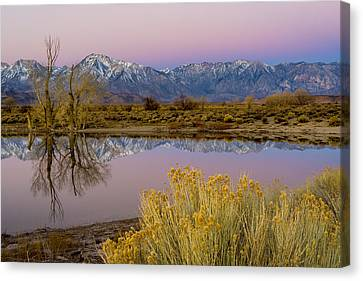 Eastern Sierra Dawn Canvas Print by Joe Doherty