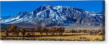 Eastern Sierra Nevada Panorama - Bishop - California Canvas Print
