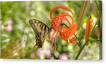 Eastern Tiger Swallowtail - Papilio Glaucus - Butterfly On Tiger Lily Canvas Print