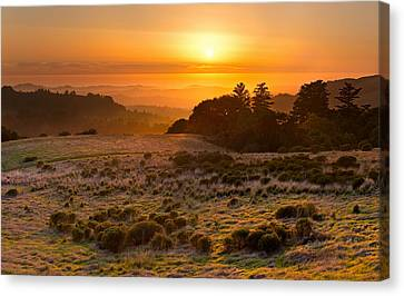 Easy Living - Russian Ridge California Canvas Print by Matt Tilghman
