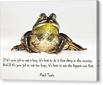 Eat Frog Canvas Print by John Crothers