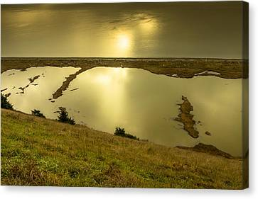 Ebey's Bluff Trail Canvas Print by Calazone's Flics