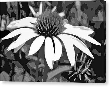 Canvas Print featuring the photograph Echinacea - Digital Art by Ellen Tully