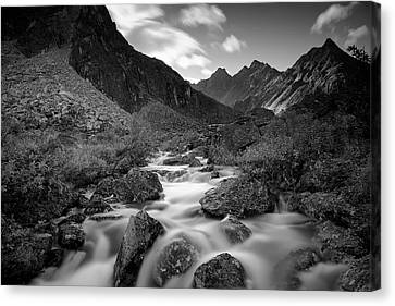 Echo Canvas Print by Ed Boudreau