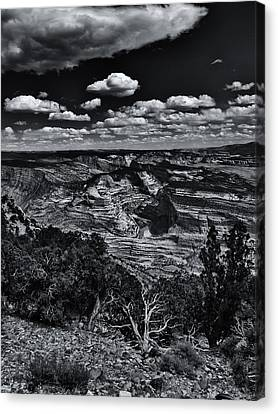 Echo Park From The Ridge Black And White Canvas Print by Joshua House