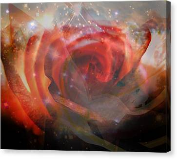 Echoes Of The Rose Canvas Print by Judy Paleologos
