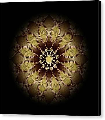 Eclipsed Mandalas   340 Canvas Print by David Dehner