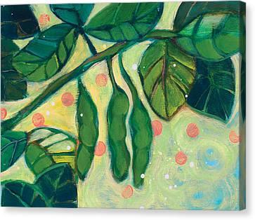 Edamame Pods Canvas Print by Jen Norton