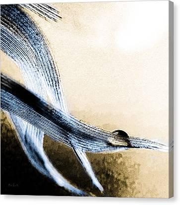 Edge Of A Feather Canvas Print by Bob Orsillo