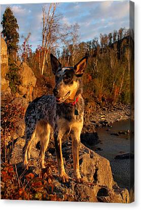 Canvas Print featuring the photograph Edge Of Glory by James Peterson