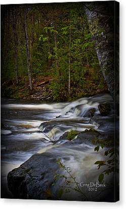 Edge Of The Stream Canvas Print by Greg DeBeck