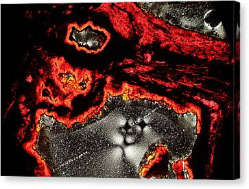 Edge Of The Universe Canvas Print