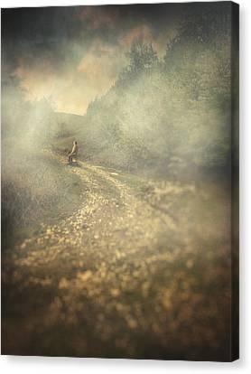 Edge Of The World Canvas Print by Taylan Apukovska