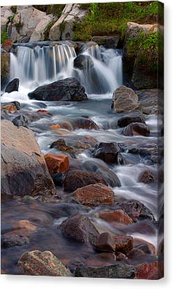 Edith Creek Mt Rainier National Park Canvas Print by Bob Noble Photography