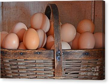 Egg Basket Canvas Print by Mary Carol Story