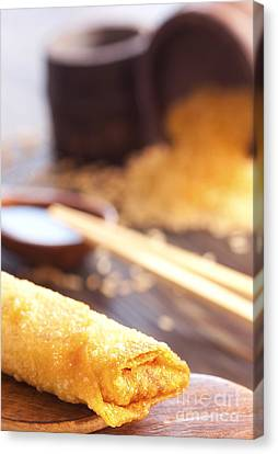 Egg Roll Canvas Print by Mythja  Photography