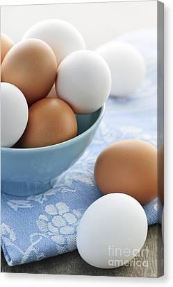 Eggs In Bowl Canvas Print by Elena Elisseeva
