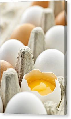 Eggs In Box Canvas Print by Elena Elisseeva