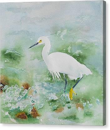 Egret 2 Canvas Print