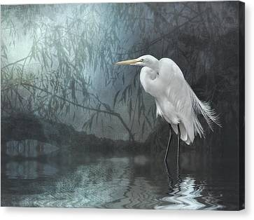 Egret In Moonlight Canvas Print by Brian Tarr