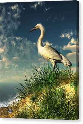Daniel Canvas Print - Egret In The Dunes by Daniel Eskridge