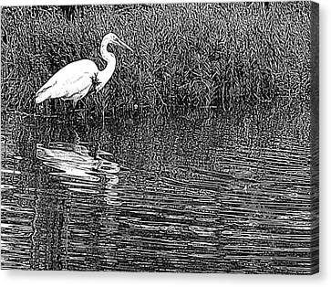 Canvas Print featuring the photograph Egret In The Thicket by Suzy Piatt