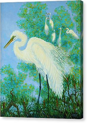 Egrets In Rookery - 20x16 Canvas Print by Dwain Ray