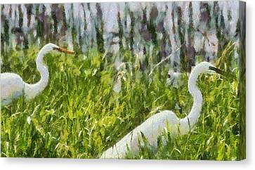 Egrets Painting Canvas Print by Dan Sproul