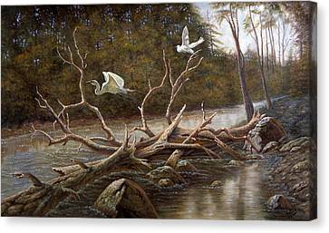 Egret's Paradise Canvas Print by Gregory Perillo