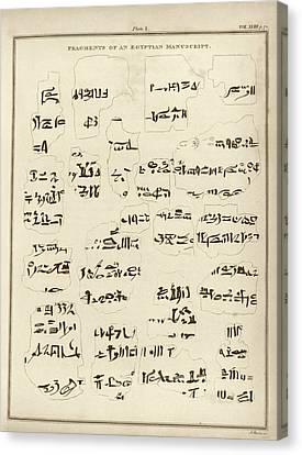 Egyptian Manuscript Fragments Canvas Print