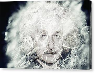 Einstein Dandy Canvas Print